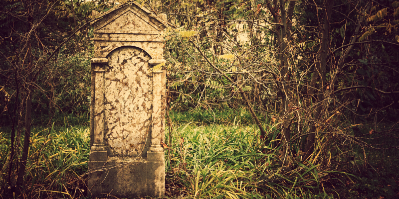 guest blogging dead and buried - SEO